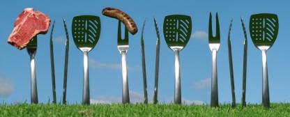 family reunion picnic utensils