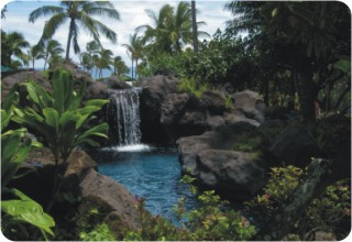 Hawaiian Island Setting