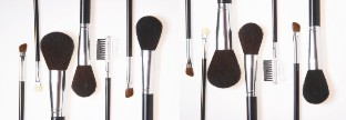 blush and eye brushes