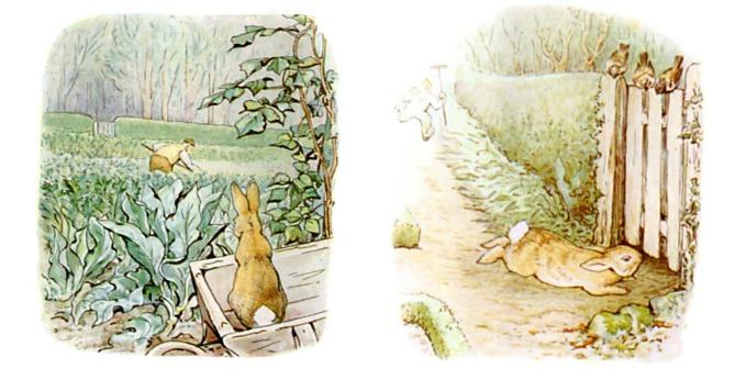 Peter Rabbit Escapes