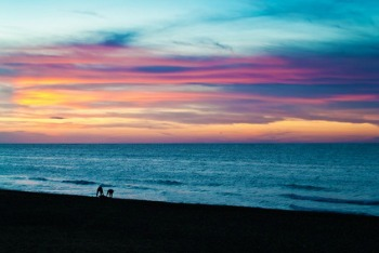 Enjoying an Ocean Sunset with Friends