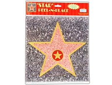 Celebrity Walk of Fame Star
