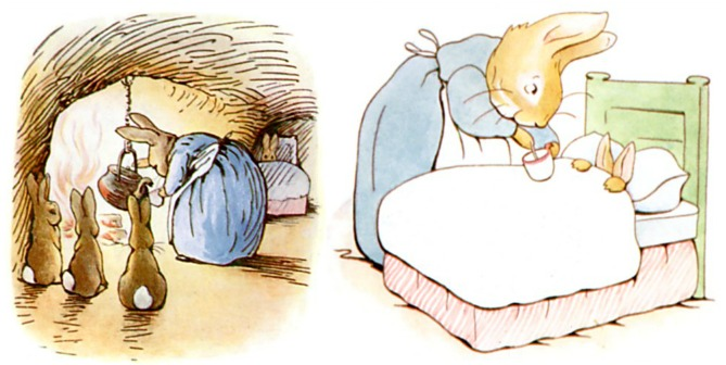 Peter Rabbit Early Bedtime