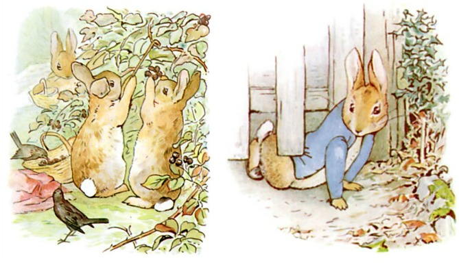 Peter Rabbit Being Naughty While His Siblings Obey