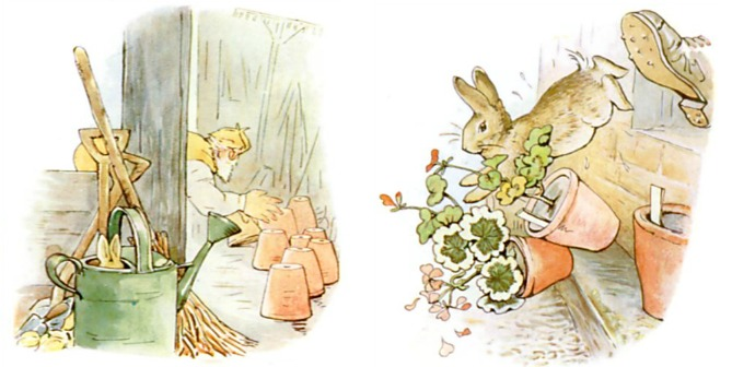 Peter Rabbit Pursued By Mr. McGregor
